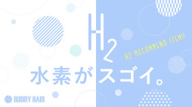 H2_item
